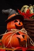 Herbstwächter